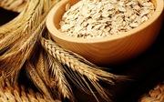 Lợi ích của việc ăn yến mạch mỗi ngày