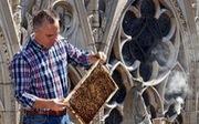 Lo lắng cho 180.000 con ong trên mái Nhà thờ Đức Bà Paris
