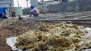 Sau bão, phát hiện cả kho hóa chất Trung Quốc bỏ hoang