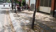 Người Sài Gòn sau đêm mưa lớn