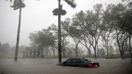 Bão Irma và Harvey thổi bay hàng chục tỉ đô