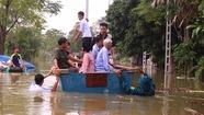 Dân Hà Nội chèo xuồng để đi, thả lưới bắt cá