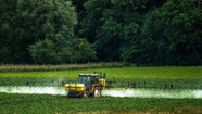 Chính phủ Pháp sẽ cấm sử dụng một hoạt chất diệt cỏ từ năm 2022