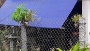 Bắt nghi phạm chuyên rạch đùi phụ nữ tại Đồng Tháp