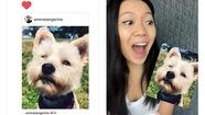 Chế hình ảnh vui nhộn từ tin nhắn Instagram