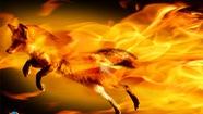 """""""Cáo lửa"""" có phiên bản 34, nhiều tính năng mới"""