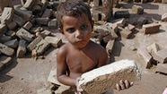 ILO: Khoảng 168 triệu trẻ em có nguy cơ bị bóc lột sức lao động