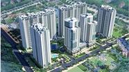 5 lý do nên chọn mua căn hộ Samland Giai Việt