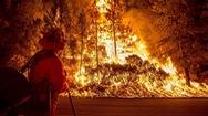 50 người thiệt mạng trong vụ cháy rừng thảm khốc nhất lịch sử California