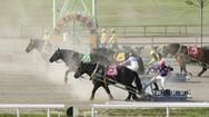 Trường đua ngựa kéo độc nhất trên thế giới