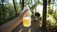 Có nên tự uống nước tiểu của mình để sinh tồn?