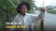 Câu rê cá lóc - mê mẩn với nghề làm chơi ăn thiệt