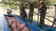 Tiêu hủy gần 2 tấn heo nhập lậu từ Campuchia vào Việt Nam