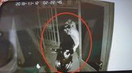Đột nhập nhà dân lấy xe máy, tên trộm miệng ngậm dao bấm phòng thủ