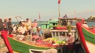 Thông tuyết tàu ra đảo Lý Sơn sau bão số 6