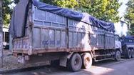 Xử phạt tài xế đổ trộm hàng chục tấn rác ở khu vực giáp ranh 3 tỉnh