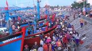 Trúng đậm hải sản gần bờ, nhiều ngư dân thu chục triệu đồng mỗi ngày