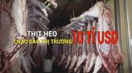 Tin nóng 24h: Dịch tả heo tấn công, chao đảo thị trường thịt heo 10 tỉ USD