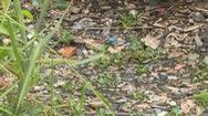 Báo động nạn vứt rác bừa bãi làm ô nhiễm nguồn nước nhiều vùng nông thôn