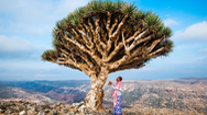 Vẻ đẹp tuyệt diệu của hòn đảo đẹp nhất thế giới: Socotra
