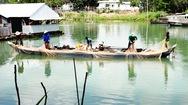 Lưới cá lăn mùa nước cạn