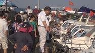 Hơn 12.000 khách đặt vé ra Lý Sơn dịp lễ 30-4