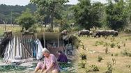 Tin nóng 24h: Người dân trong vùng dự án Sài Gòn Safari mong được giải quyết thỏa đáng