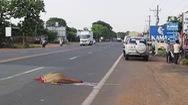 Nam thanh niên tử vong tại chỗ khi tự lao vào xe khách