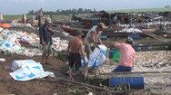 Sắp xếp lại vùng nuôi cá bè sau sự cố cá chết trắng trên sông La Ngà