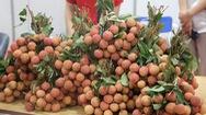 Vải thiều Lục Ngạn giá 60.000 đồng/kg trong Tuần lễ vải thiều tại Hà Nội