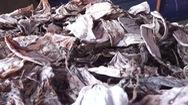 Đã thu mua hết hàng ngàn tấn mực khô tồn đọng giúp ngư dân Quảng Ngãi