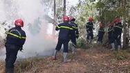 Đốt nhang ngày rằm gây cháy rừng tại Quảng Ngãi