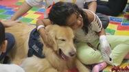 Độc đáo những chú chó trị liệu ở bệnh viện nhi