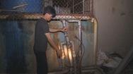 Một doanh nghiệp chế biến hải sản liên tục bị xử phạt về môi trường