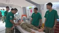 VN sẵn sàng đưa bệnh viện dã chiến cấp 2 số 2 tham gia gìn giữ hòa bình Liên hợp quốc