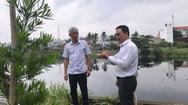 Cho dân trồng tạm cây dọc kênh để ngăn xả rác, tệ nạn xã hội