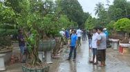 Sa Đéc lần đầu tiên có chợ phiên dành riêng cho bonsai