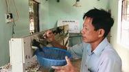 Tin nóng 24h: Bệnh viện cho chim yến giữa biển khơi