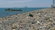Một bãi biển không có cát trắng hiếm thấy tại Nha Trang