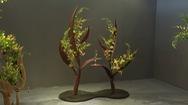 Hơn 100 tác phẩm hoa nghệ thuật khoe sắc thắm