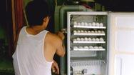 Biến tủ lạnh cũ thành... máy ấp trứng