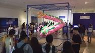 """Triển lãm """"Loài Plastic"""" - Thông điệp môi trường qua lăng kính của nghệ thuật và công nghệ"""