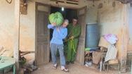 9 tháng gây ra 29 vụ trộm nông sản trên 1 tỷ đồng