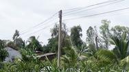 Tin nóng 24h: Bé trai 5 tuổi ở Long An tử vong do dây điện hạ thế rơi trúng