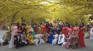 Đông đảo nghệ sĩ, người dân tham quan lễ hội Tết Việt trước giờ khai mạc