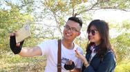 Video: Bạn trẻ thích thú với mùa tràm vàng bên triền cát trắng Bình Thuận