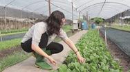 Góc nhìn trưa nay | Khám phá vườn rau hữu cơ 6 không giữa lòng Sài Gòn
