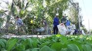Góc nhìn trưa nay | Nông dân chung tay bảo vệ môi trường