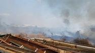 Cháy bãi cỏ hàng chục hecta trong khu công nghiệp, công nhân nháo nhào dập lửa