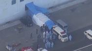 Video: Hai hành khách Nhật trên du thuyền Diamond Princess tử vong vì virus corona